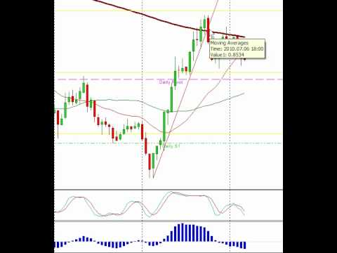 Forex Live Day Trading- Live Forex Room, Forex Signals – Forex Mentor