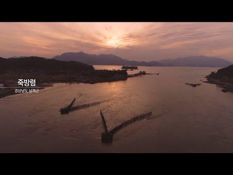 대나무 그물에 담긴 선조의 지혜, 남해 지족 죽방렴 | KBS뉴스9 ID, 20191108(금)
