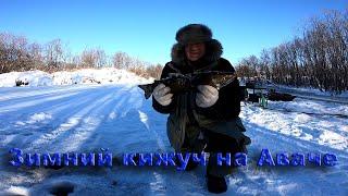 Авача река рыбалка
