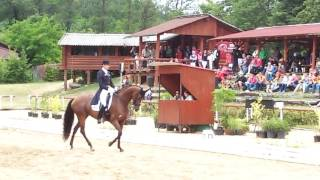 video of Well Done de la Roche Cmf
