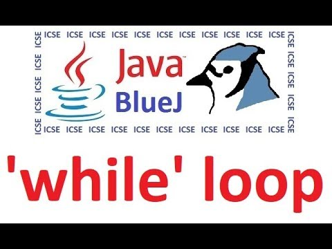 While Loop In Java