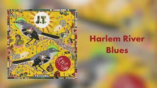 Steve Earle Harlem River Blues