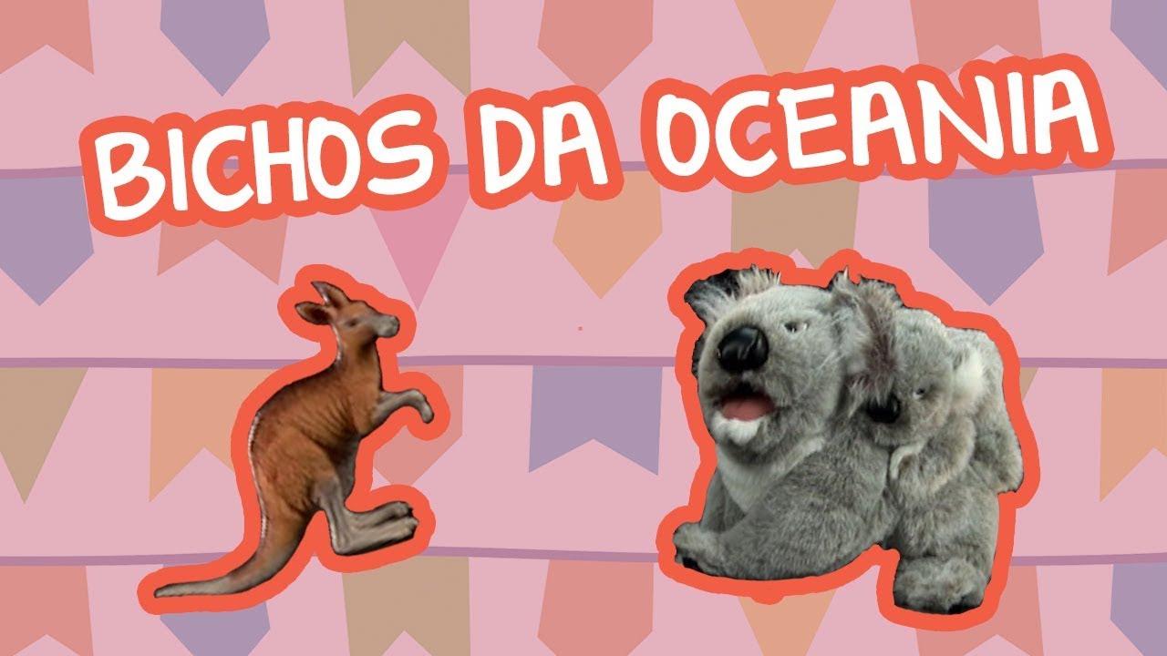 BICHOS DA OCEANIA ???? | BEBÊ MAIS MUNDO ????