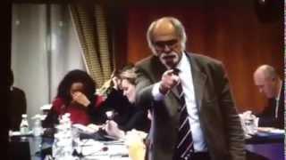 preview picture of video 'Extrait du conseil municipal de Limoges - Février 2015'