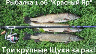 Рыбалка в красном яре омская область