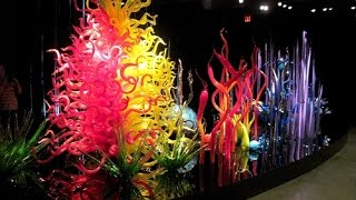 The Chihuly Collection   St Petersburg