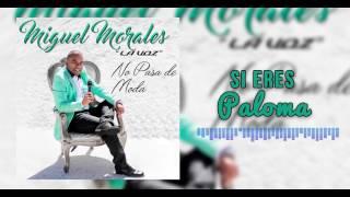 Si Eres Paloma - Miguel Morales I Mano De Obra ®