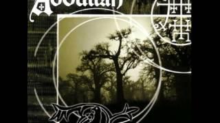 Abdullah - Medicine Man