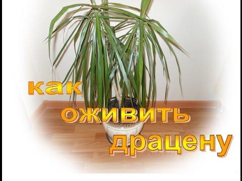 Продажа домов город счастья волгодонск
