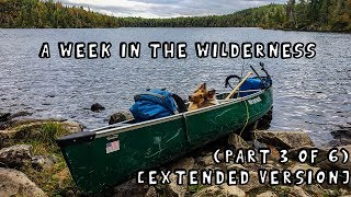 A Week in the Wilderness with My Dog (Part 3 of 6) [Extended Version]