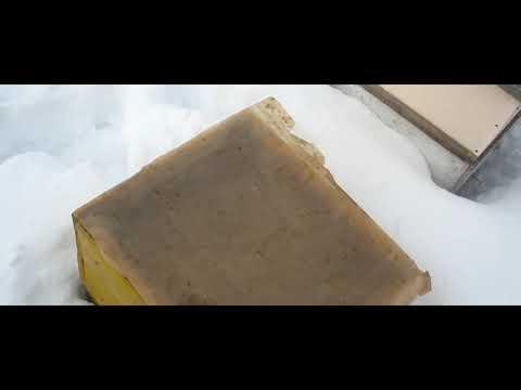 Пчеловодство. Первая подкормка пчёл мёдом. Зимний осмотр пасеки.
