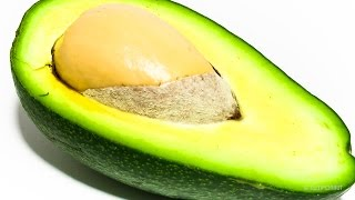 Avocado Timelapse - Video Youtube