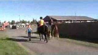1 4H Horse Fair 2011 Tulsa.wmv