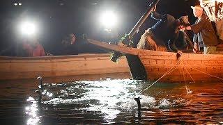 豪雨で川の流れ変化長良川鵜飼、中止は過去最多42日