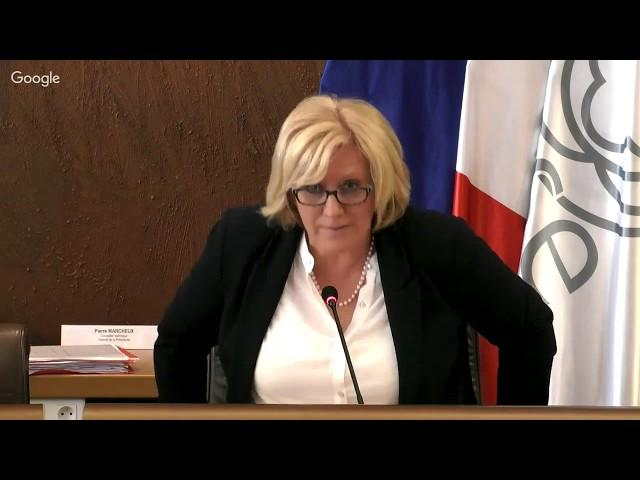 Séance publique de l'Assemblée départementale du lundi 25 mars 2019