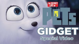 Gidget - Secret Life Of Pets (Special Video)
