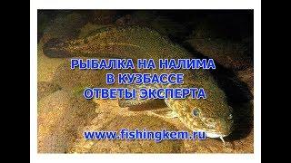 Рыболовные места в кемеровской области
