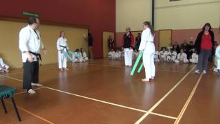 preview picture of video 'wrka kyoso cup ring3 d12 13+female int kendo 03b'