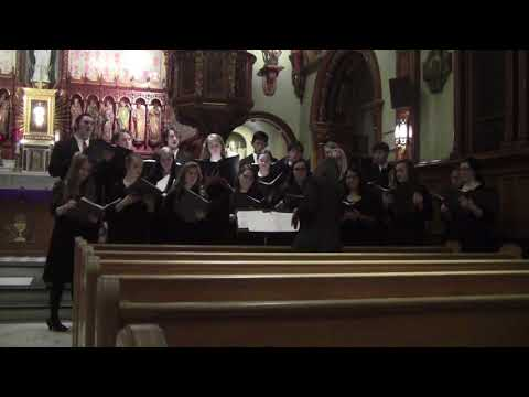 Northeast Catholic College's Polyphony Tour 2017 - O Come O Come Emmanuel
