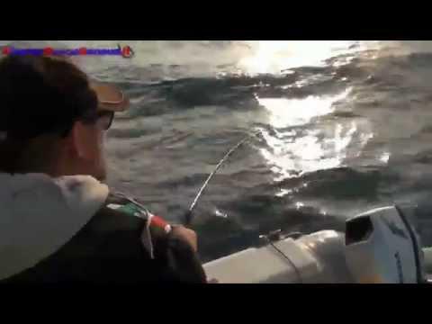 Mare secco che pesca in Arkhangelsk