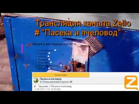 """Трансляция канала Zello """"Пасека и пчеловод"""". (Обзор за день) 21/04/2019"""