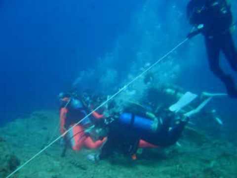 Japaner, Blue Corner,Palau