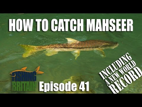 How to catch Mahseer – Fishing Britain, episode 41