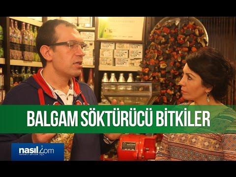 Balgam söktürücü bitkiler | Sağlık | Nasil.com