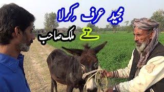 New Clips Funny Punjabi || Majeed Kirla and Malik Sahib || Punjabi Latest Funny Video Clip