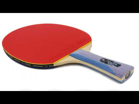 Best Ping Pong Paddle  | Top 5 Best Ping Pong Paddle Expert Reviews