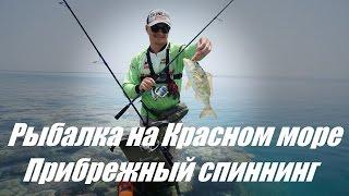 Рыбалка на Красном море. Прибрежный спиннинг