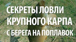 Рыболовная снасть для ловле карпа