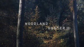 ELLIOT'S FALL - Woodland Hunter II (THE APPLESEED CAST cover)