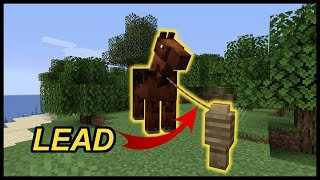 How To Use Lead In Minecraft?
