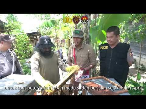 Kadistrik Walelagama: Satgas Binmas Noken Memang Sangat Dibutuhkan oleh Masyarakat Kami