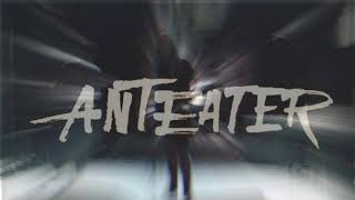 Video Anteater - Koncerty jaro/léto 2019