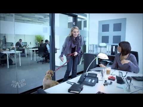 Partnervermittlung neubrandenburg