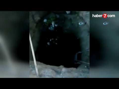 Tarsus'taki gizemli kazıdan ne çıktığı belli oldu