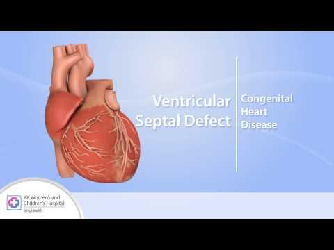 Dynamiczny obserwacja pacjentów z nadciśnieniem tętniczym