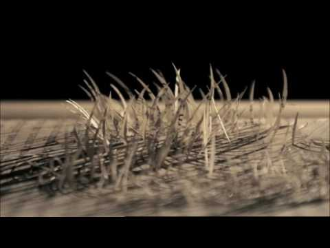 Spectacular Stop Motion Book Ad Makes eBooks Seem Downright Soulless