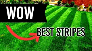4 UK Summer Lawn Care Mistakes - August [4K]