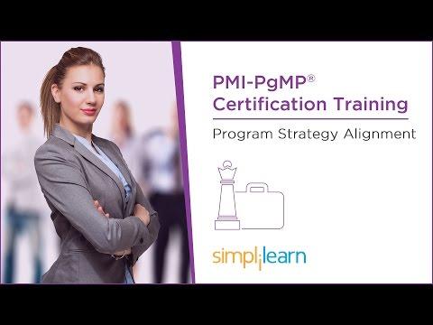 PMI-PgMP® Tutorial   Lesson 4: Program Strategy Alignment ...