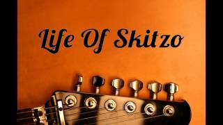 "Sir. Skitzo ""My Life"" Cover"