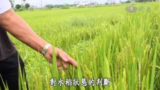 【農夫與他的田】20141006 - 三星青農伴耕田