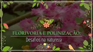 Herbívoros florais interferem na polinização. Veja aqui um video sobre um interessante estudo nessa
