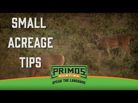 Small Acreage Hunting Tips video thumbnail