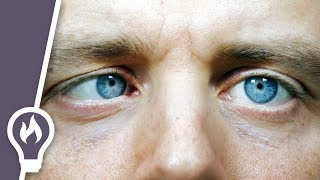 How to move one eye on its own (and the science of eye movement)