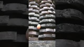 Egg in shredder