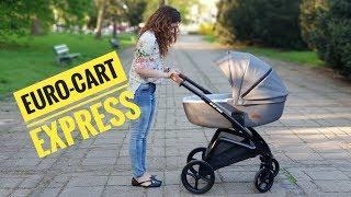 Детская коляска 2 в 1 EURO CART Express grey fox от компании Beesel - видео