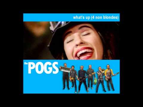 The Pogs - What's Up (4 Non Blondes Cover)